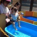 プール、水遊びをしました